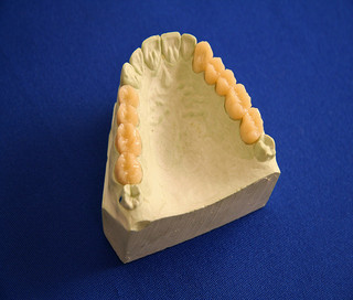 Замещение биологических зубов стало на шаг ближе к реальности